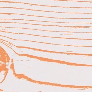 Arancio Neg 20x120 pz1