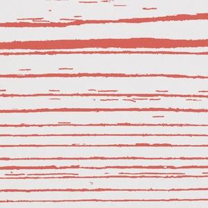 Rosso Neg 20x120 pz1