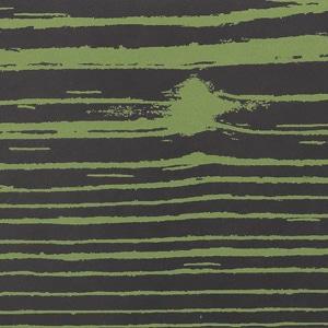 Verde2 Mat-Neg Nero 20x120 pz1
