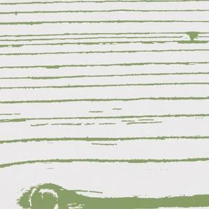Verde2 Neg 20x120 pz1