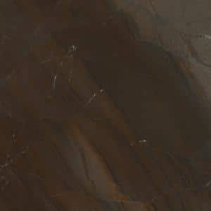 Elegant Brown - Polished - Quartzite