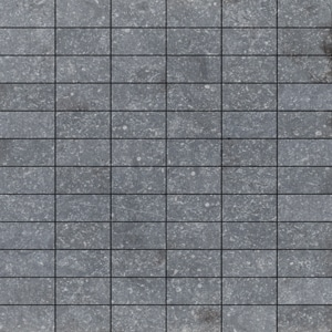 Bluestone - 1x2 Mosaic