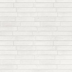 Muro41-Milk-