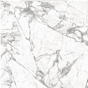 INVISIBLE-WHITE_LUCIDATO_B2XL_ST_F5_c40_square